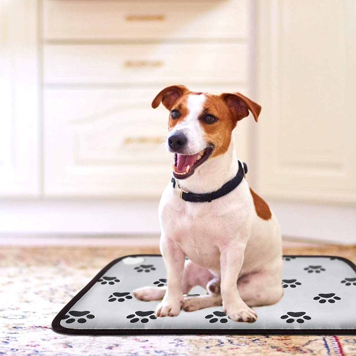 aileepet heating pad for dog with arthritis
