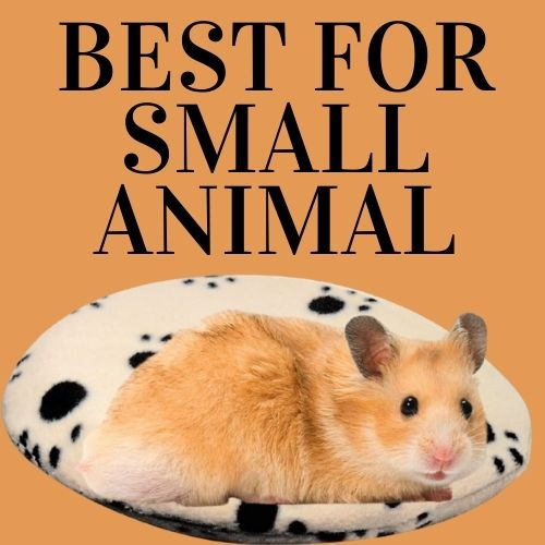 Best heating pad for small animal