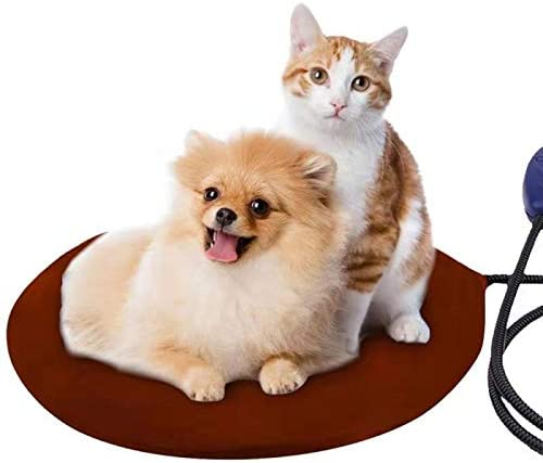 lightter electric pad for cat