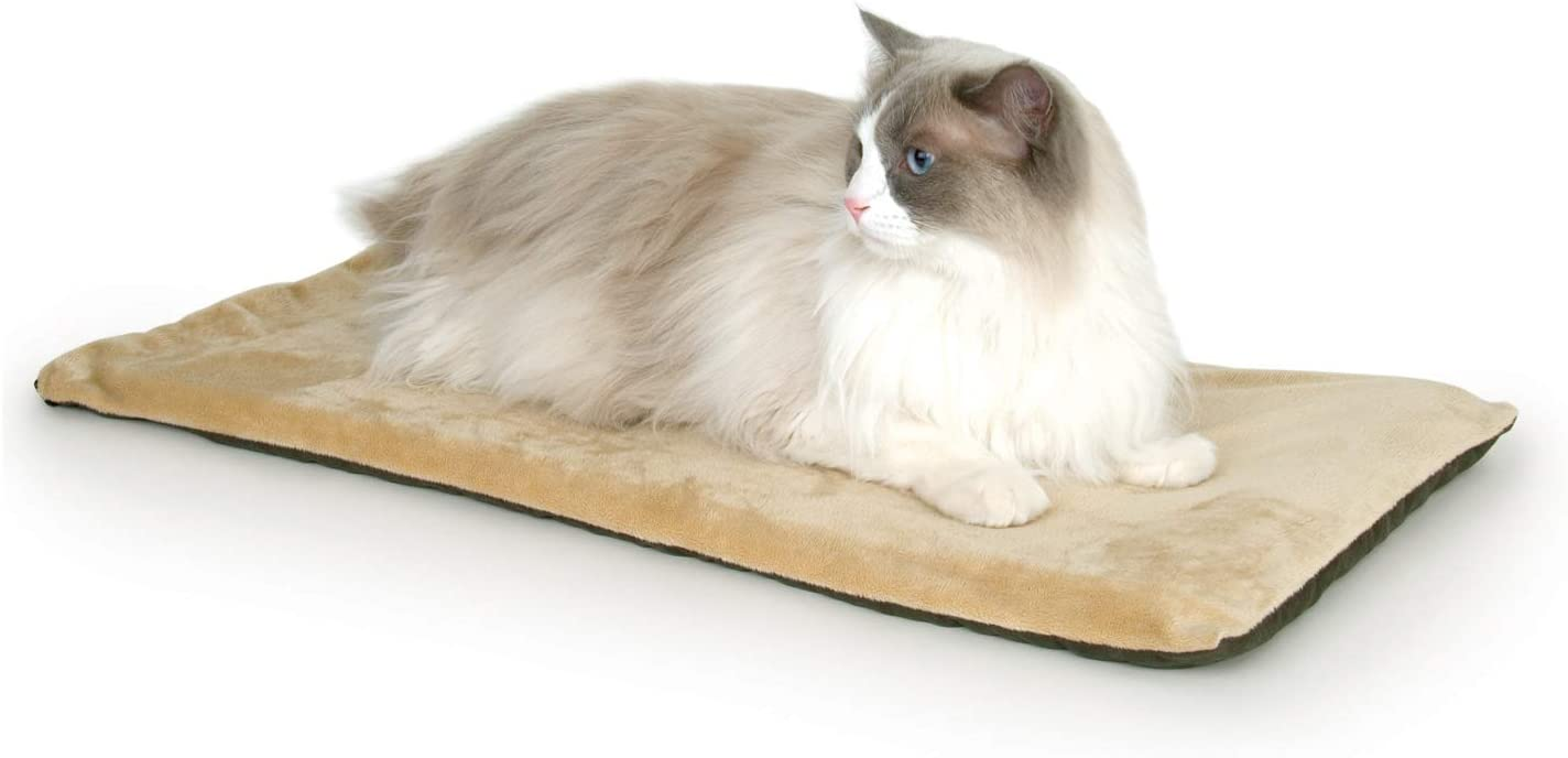 best heating pads for cats