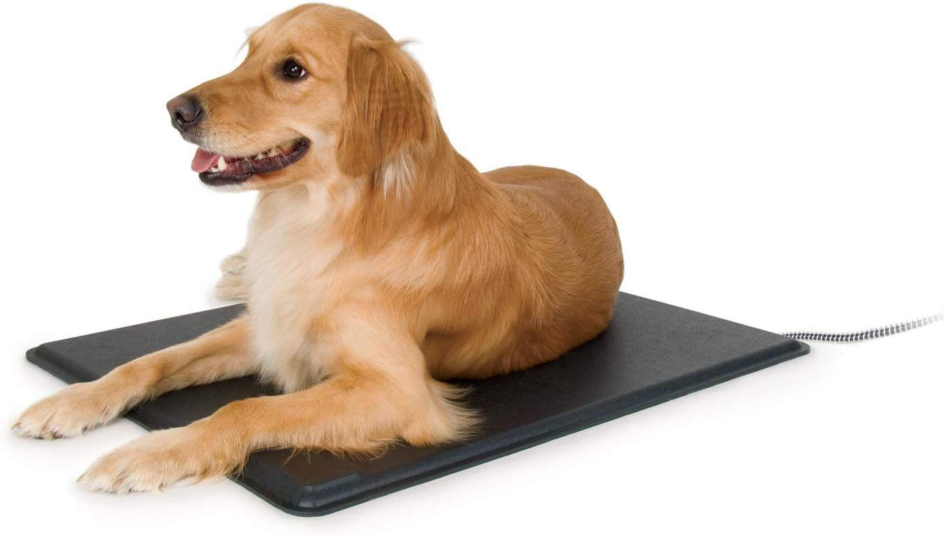 lectro best heating pad for pets