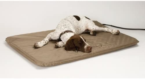 best heating pad for dog with arthritis