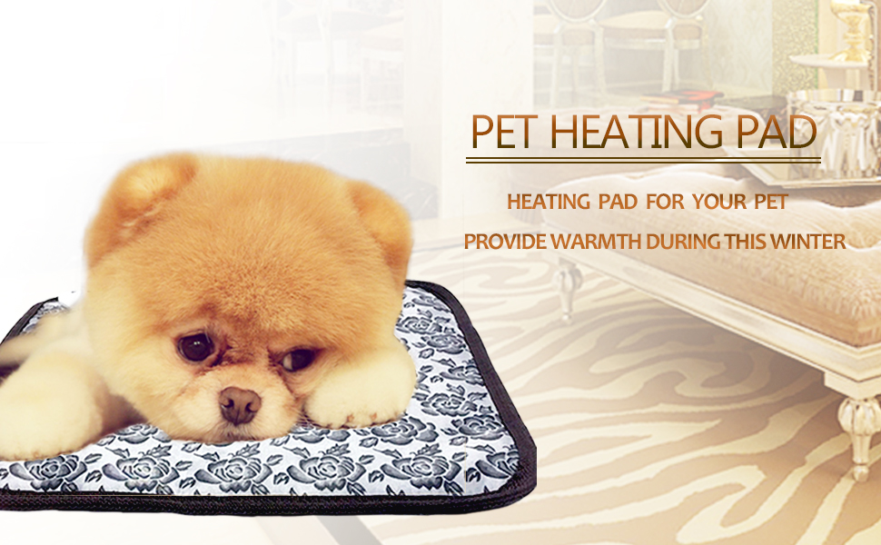 best heating pads for pets