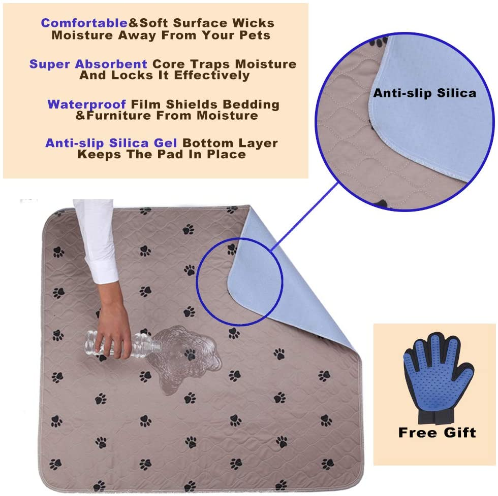 Large pee pads for senior cats