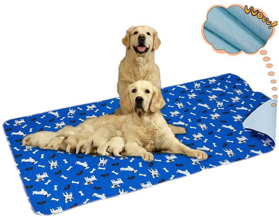 yangbaba pee pads for older dogs